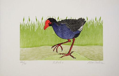 Allan Gale Kura Gallery Maori Art Design New Zealand Aotearoa Printmaking Limited Edition Woodcut Print Pukeko