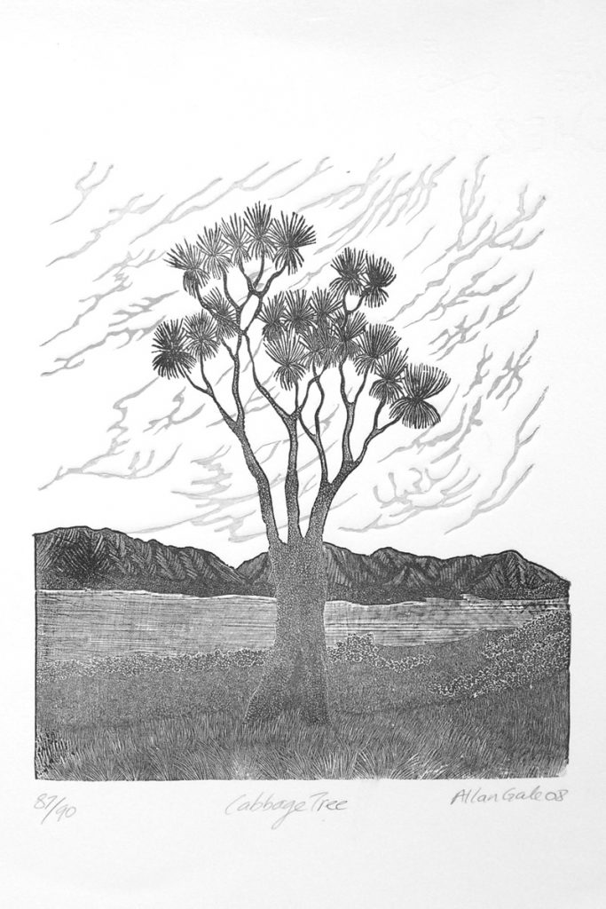 Black & white print of a cabbage tree by Allan Gale