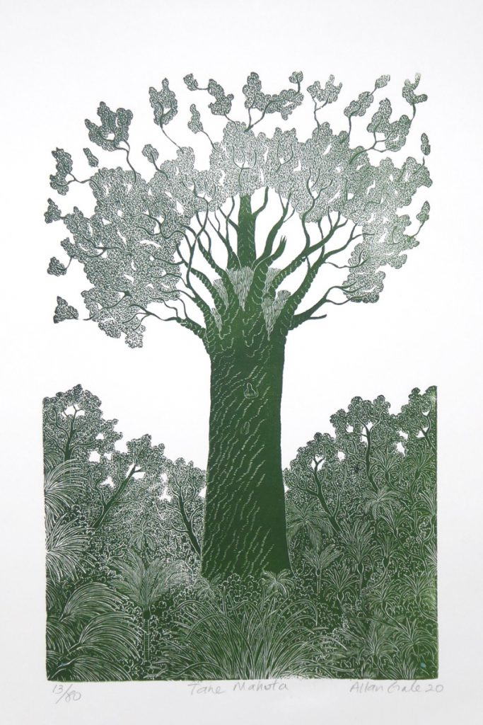Print of a large tree called 'Tane Mahuta' by Allan Gale
