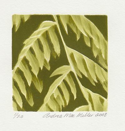 Small Punga Andrea Miller print contemporary new zealand art kura gallery