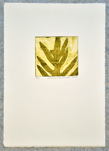 Andrea Mae Miller Kura Gallery Maori Art Design New Zealand Printmaking Fern Limited Edition Print