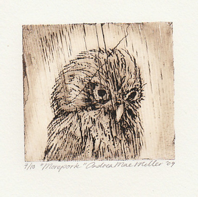 Morepork, print bamboo etching, 2009, Andrea Mae Miller exhibition kura art gallery new zealand